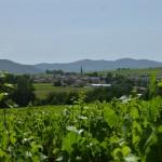 Néty - Les Terrains Rouges - Vue sur Saint-Étienne des Oullières