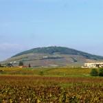 Vue sur Mont Brouilly